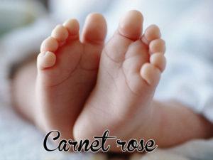 Carnet Rose. Une famille 100% ACAP